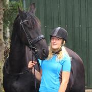 Bijrijd paard gezocht omgeving Leeuwarden