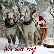 Win een paardenhaar ring!