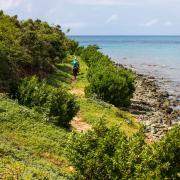 Stagiares gezocht op Sint Maarten