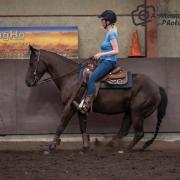 Western bijrijdpaard gezocht omgeving Achterveld