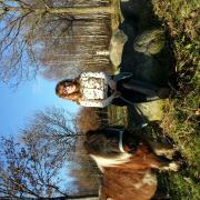 verzorgpony/paard gezocht (omgv: Ter Apel)