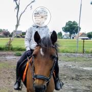 Brave C pony te koop