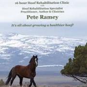 10 dvd's natuurlijk bekappen- Pete Ramey
