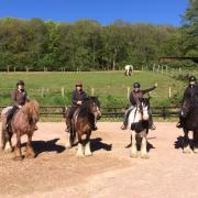 Paardrijden in Frankrijk Morvan Rustique