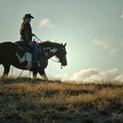 Gezocht: cowboy/cowgirl Drents Friese Woud voor portfolio