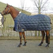harry's horse High liner maat 185