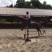 Bijrijd/lease paard gezocht