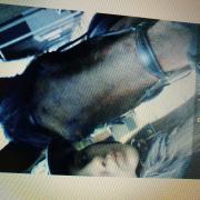 Lease paard