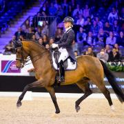 Clinic: Jill Huijbregts (Equestrian Centre de Peelbergen)