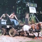 Marathonwagen tweespan pony's opknapper