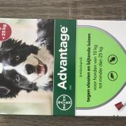 Nieuwe verpakking Advantage voor hond van 10 tot 25 kg.