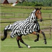 Splinternieuwe Bucas buzz off full neck zebra