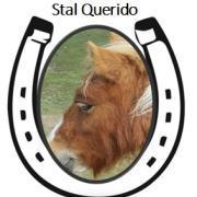 Stalling/opfok