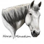Paardvriendelijke instructie Centered Riding of Jumping NB