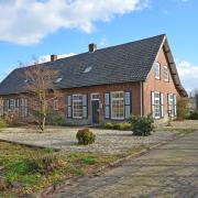 Paard(en) aan huis in Boxtel (omgeving Den Bosch / Tilburg)