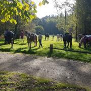 Pink Ribbon Sponsorrit 2019 met Gids te paard op de Veluwe