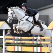 Opleiden, trainen of doorrijden van uw paard/pony