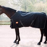 Paardendeken   100 gram   oersterk   gratis verzending