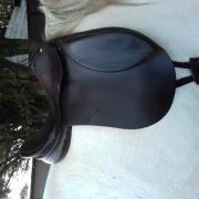 Xenophon zadel saddle