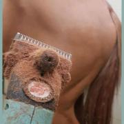 Uw paard of pony vakkundig laten scheren?