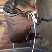 Zo goed als nieuw!! Horseware Rambo Wug 400gr, maat 183