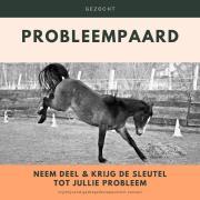 Gezocht: paard met probleemgedrag