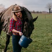 Heb jij een paard met een probleem?