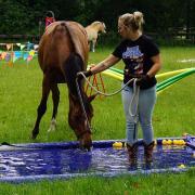 Horsemanship / Schriktraining weekend