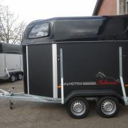 Nieuwe Hotra Salinero 1,5 paardstrailer met polyester vloer!