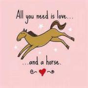 Gezocht: lieve E-pony of klein paardje