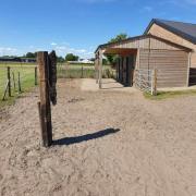 Plekje vrij voor 2/3 paarden/pony's in zundert