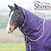 Gezocht: Shires Tempest Plus halsstuk purple white maat L