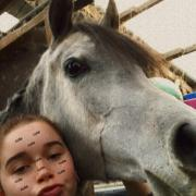 Verzorg/bijrijd pony/paard gezocht zaanstreek