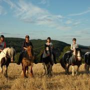 Paardencoachingweek in Frankrijk bij Morvan Rustique