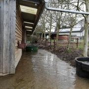 Vakantie in de Belgische Ardennen met paarden stalling