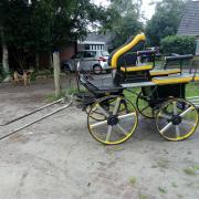 recreatie wagen voor paard en e-pony