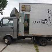 2 paards paardenwagen b rijbewijs met mankement