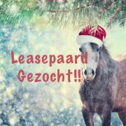 Lease paard gezocht ETTEN-LEUR