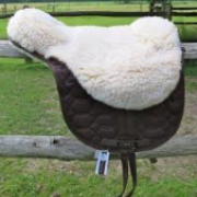 Gezocht: Barebackpad Libra (maat pony)