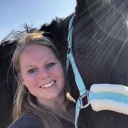 Gezocht: nieuw paarden maatje