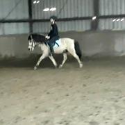 Valk B pony ruin