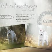 Bewerken met Photoshop - online workshop