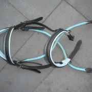 bitloos hoofdstel pony kingekruist blauwonderlegd