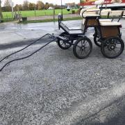 Nette geremde menwagen grote shet/ A pony