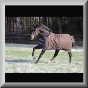 Kerbl Paardeken Winterdeck IceProtect - Bruin - 165 -215 cm