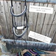 Mooie en nog goed te gebruiken items voor paard en ruiter