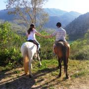 Gids gezocht voor toeristische stal op Kreta, GR