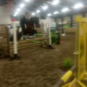 Onwijs lieve pony