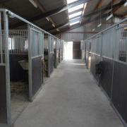 Kleine pensionstalling paarden met veel weidegang