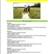 Ponykamp/ruiterkamp op de Veluwe